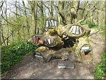 SK3455 : Library in a tree root on the woodland walk by Graham Hogg