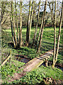 SO8398 : Footbridge across Nurton Brook in Staffordshire by Roger  Kidd