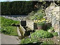 SK3091 : Spring colour by the water trough by Graham Hogg
