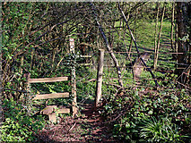 SO8398 : Footpath to Great Moor in Staffordshire by Roger  Kidd