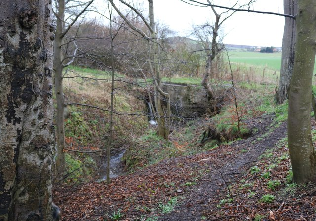 The Serpentine Walk, Lower Largo by Bill Kasman