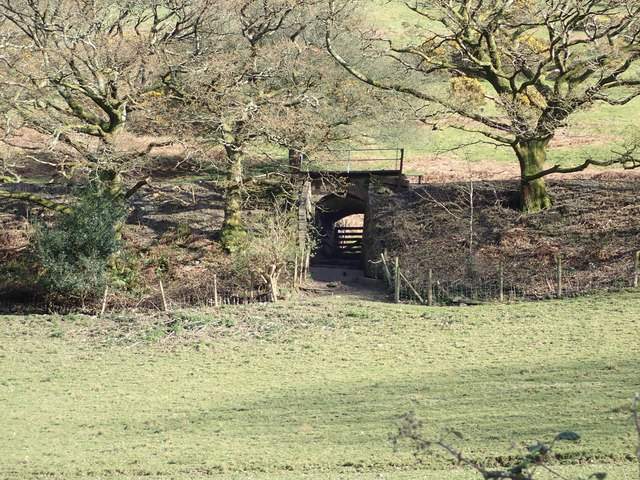 Bridge on the Talyllyn Railway
