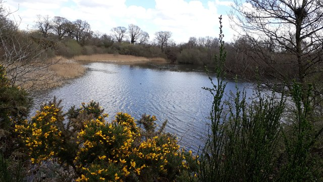 Sparham Pools - from Wensum Way