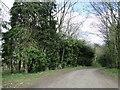 TF9007 : Road between Holme Hale and Bradenham by Adrian S Pye