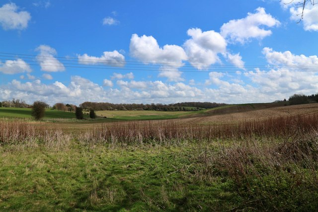 Field by Shottenden Lane
