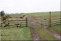 SS7849 : Track onto Old Burrow Hill by Bill Boaden