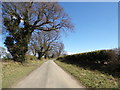 TM4999 : Border Lane, Ashby by Adrian Cable