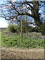 TM4899 : Footpath signpost by Adrian Cable