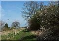 SE3156 : Saturday walk, Harrogate by Derek Harper