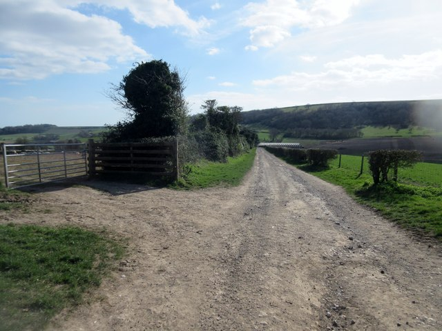 Track to Lychpole Farm
