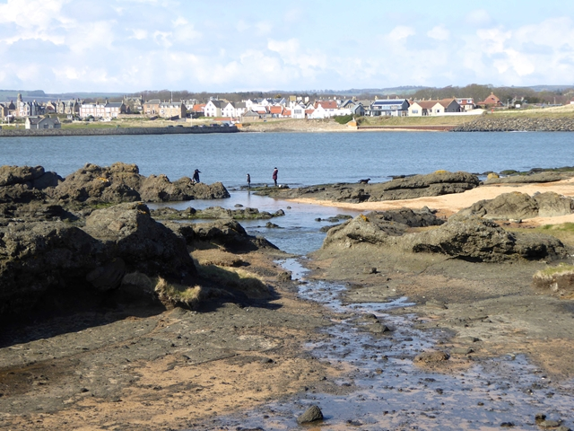 Beach at Elie Ness