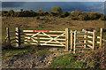 SY9484 : Gates onto Middlebere Heath by Derek Harper