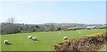 J3633 : Grazing land overlooking the Burren Valley by Eric Jones