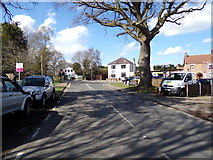 TM4599 : B1074 Herringfleet Road, St. Olaves by Adrian Cable