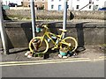 NO4102 : Decorated bicycle at Lower Largo by Oliver Dixon