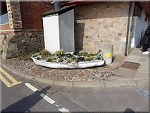 NO4202 : Floral boat on Main Street, Lower Largo by Oliver Dixon