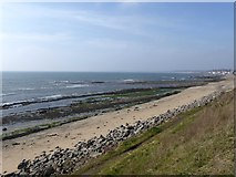 NO4202 : Shoreline east of Lower Largo by Oliver Dixon