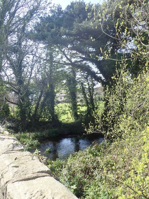 The Burren River at Bailey's Bridge