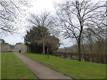 SU9949 : Path within Guildford Castle Grounds by Basher Eyre