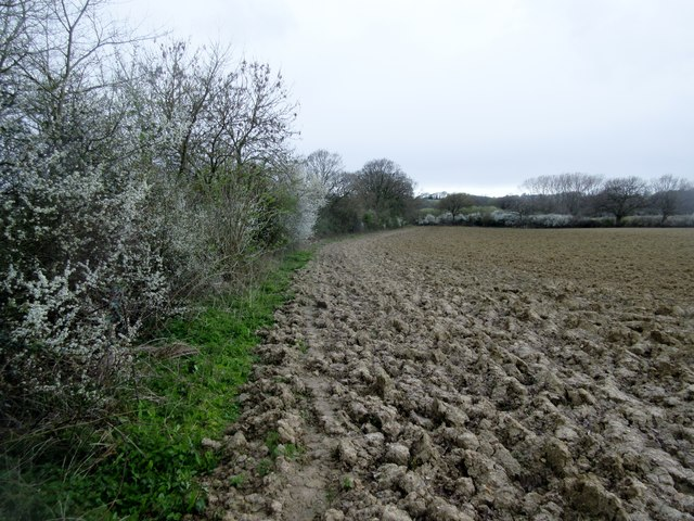 Footpath to West Wolves Farm