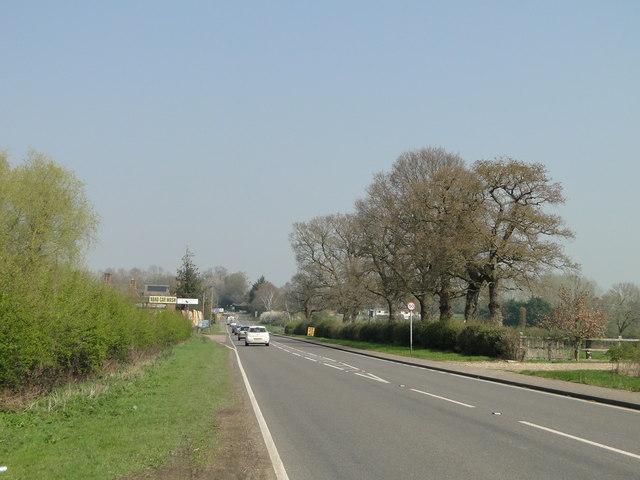 A140, a Roman Road headed towards Venta Icenorum