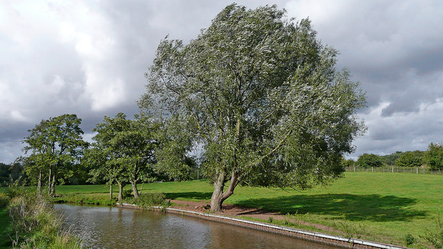 Trent and Mersey Canal north of Barlaston in Staffordshire
