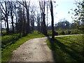 SJ5410 : Attingham Park by Chris Gunns