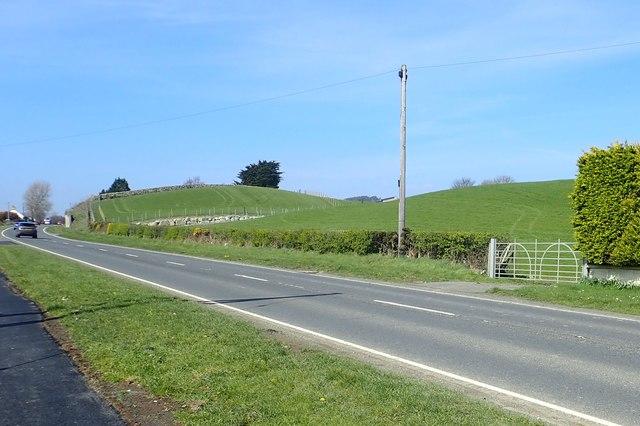 Drumlins alongside the A50 (Newcastle to Castlewellan) Road