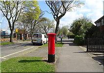 TA0832 : Inglemire Lane, Hull by JThomas