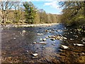 NY9939 : The River Wear, Stanhope by Bill Henderson