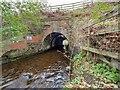 NH7046 : Scretan Burn Railway Bridge by valenta