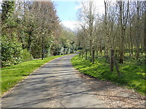 J0735 : Main drive leading to Dromantine College by Eric Jones