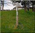 SN9926 : Wooden signpost, Glan Tarrell, Libanus, Powys by Jaggery