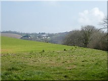 SX8591 : View of Holcombe Burnell church and farm from Garden Down by David Smith