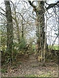 SX8390 : Stile and steps for footpath west of Shepherd's Ford by David Smith