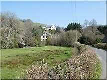 SX8189 : Marshland beside Reedy Brook by David Smith