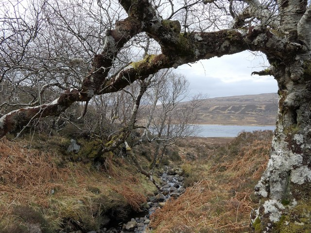 Unnamed burn, Leathad Chalaisgeig, Ross and Cromarty