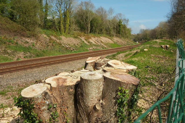 A clearer view of the railway line by Derek Harper