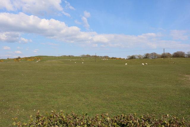Farmland near Mill of Plunton