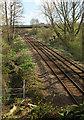 SX8866 : Railway line at Parson's Bridge by Derek Harper