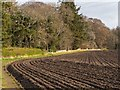NH7967 : Field above the village of Cromarty by valenta