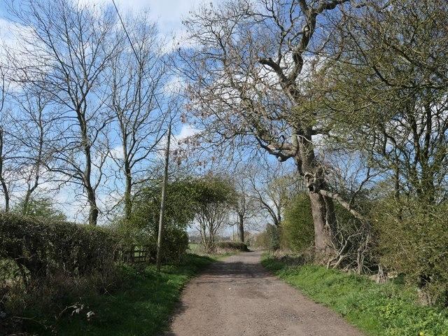 Burnshouse Lane, heading south-west