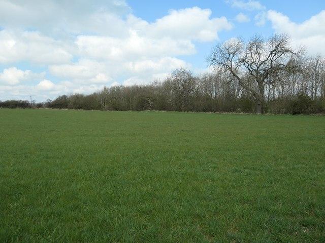Farmland west of New Hummerbeck Farm