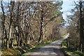 NH4845 : Minor road from Drumindorsair by Julian Paren