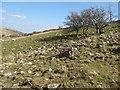 SH7365 : Bouldery slope by Jonathan Wilkins