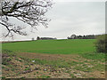 TG1329 : Agricultural land off Spa Lane by Adrian S Pye