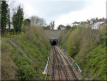 TQ3005 : New England or Hove Tunnel, Brighton by Robin Webster