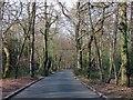 SU9585 : Stewarts Drive heading north by Steve Daniels