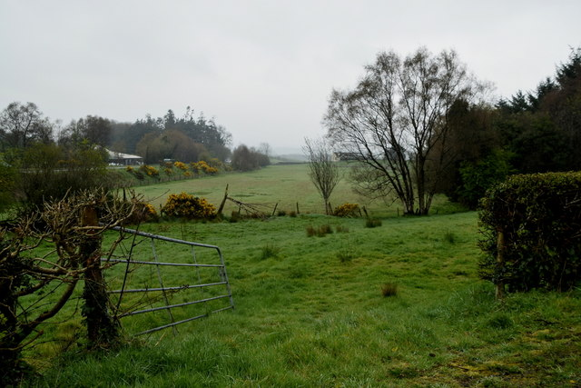 An open field, Mountjoy Forest West Division