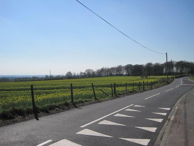 Blundell's Lane